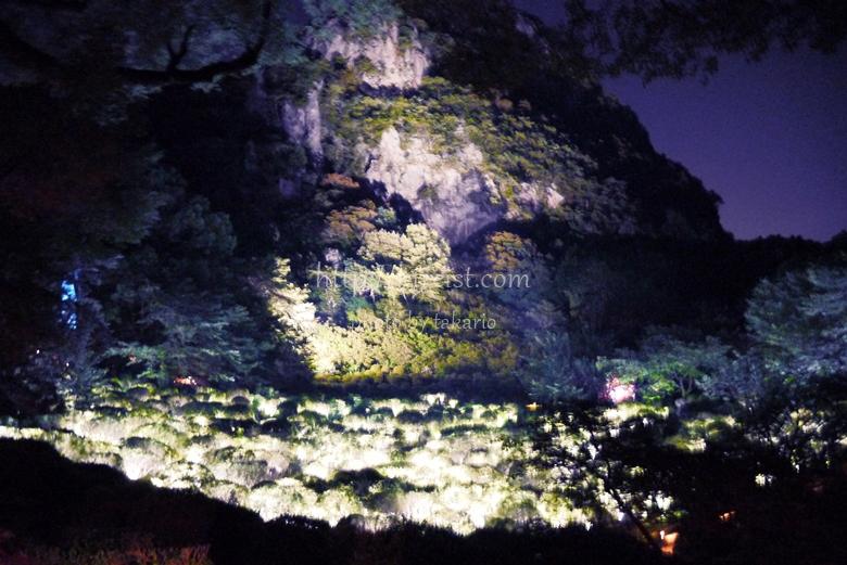 佐賀県武雄御船山楽園チームラボ作品かみさまがすまう森のアート展口コミレポート